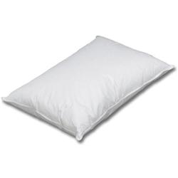 アイリスオーヤマ PFS-4363 フォスフレイクス枕