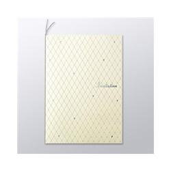 ioPLAZA【アイ・オー・データ直販サイト】コクヨS&T KJ-B210-1 インクジェットプリンタ用 招待状セット ダイヤ